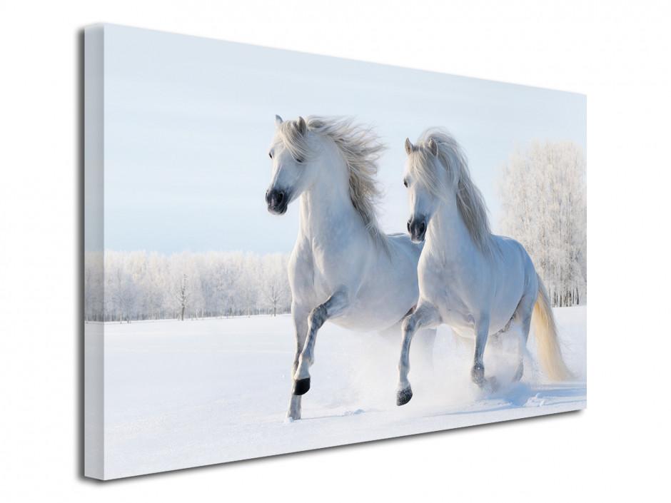 Tableau toile imprimée Chevaux dans la neige