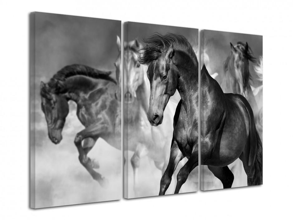 Tableau décoratif chevaux