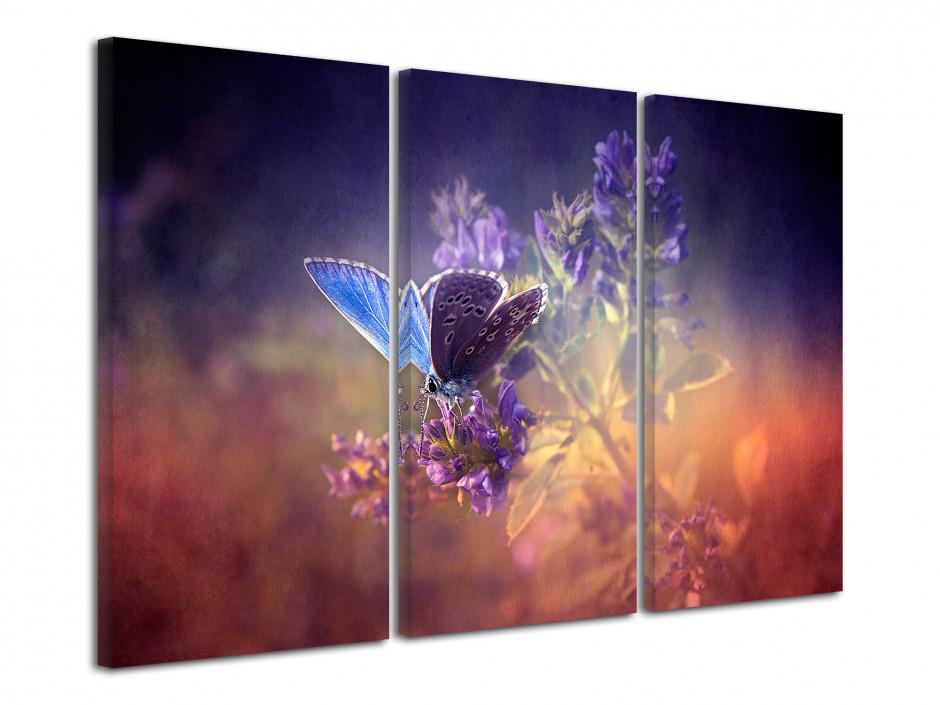 Tableau triptyque Papillons