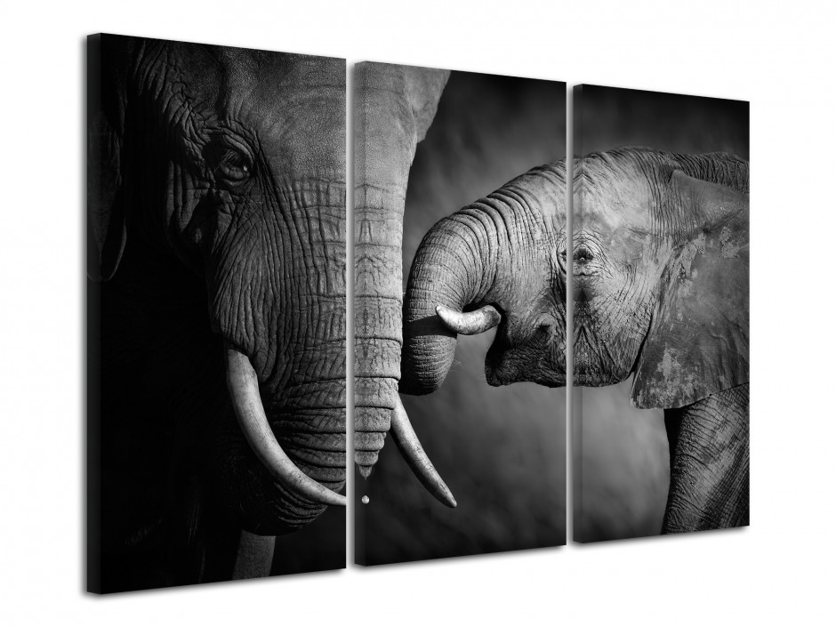 Tableau triptyque Elephant Noir et Blanc