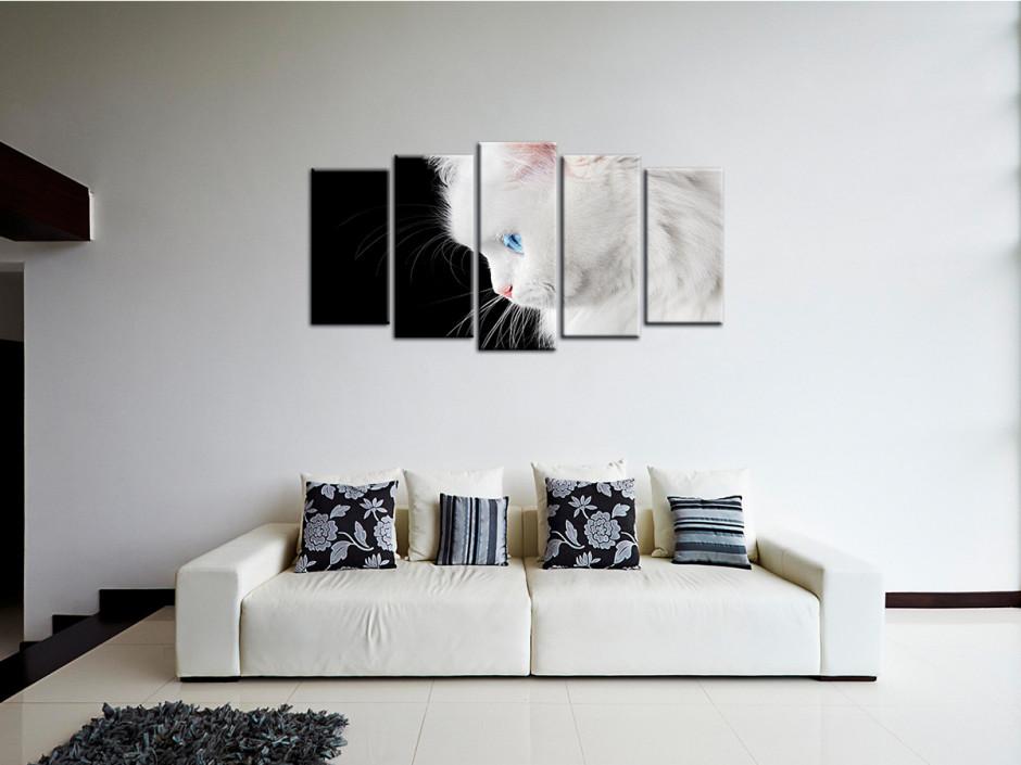 Tableau décoratif Chat Blanc