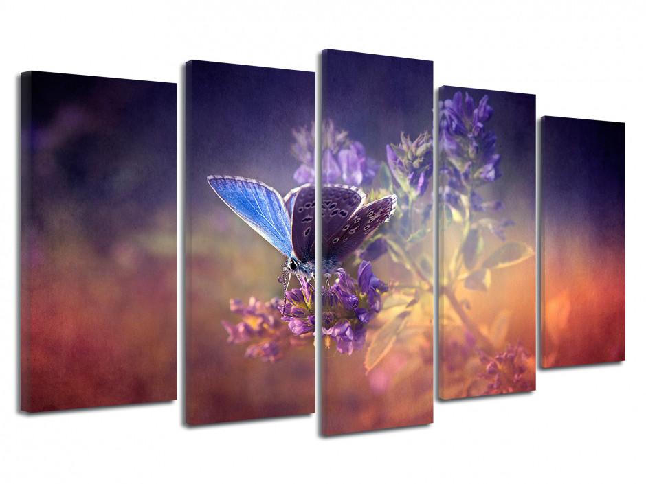 Tableau décoratif papillon couleurs