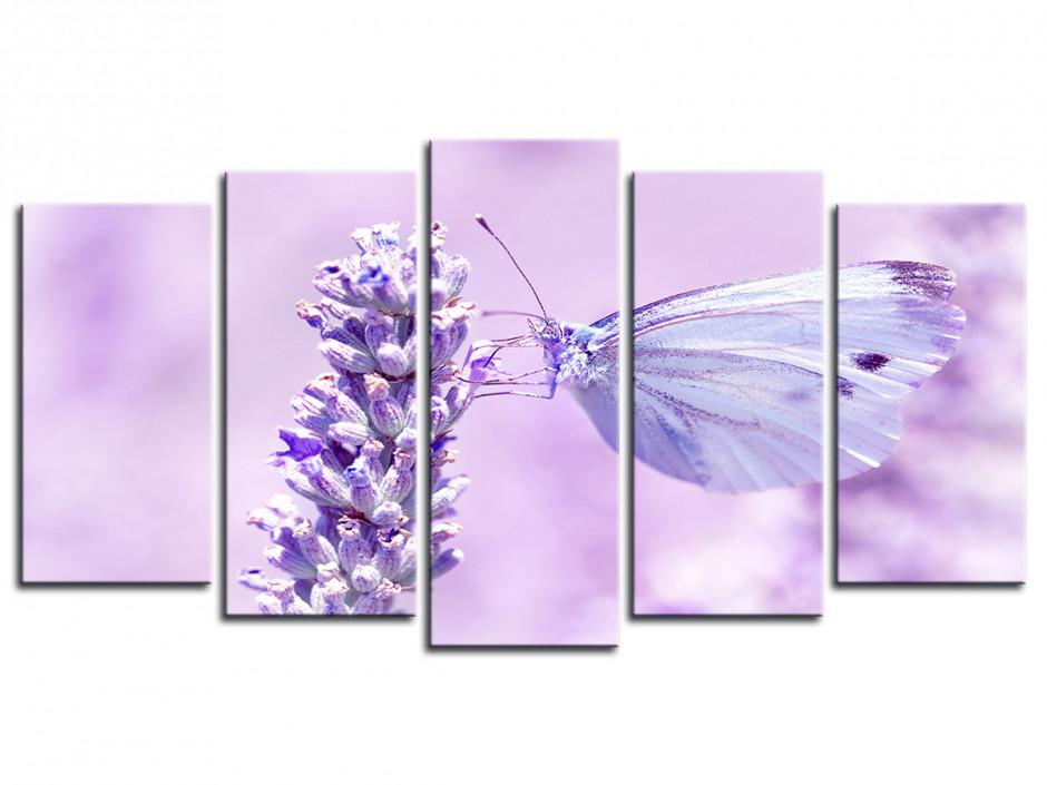 Tableau deco toile Papillons