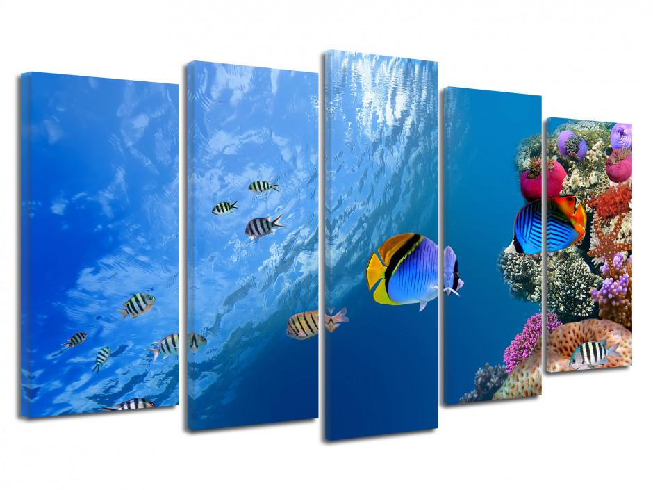 Tableau toile décorative Poissons de Mer