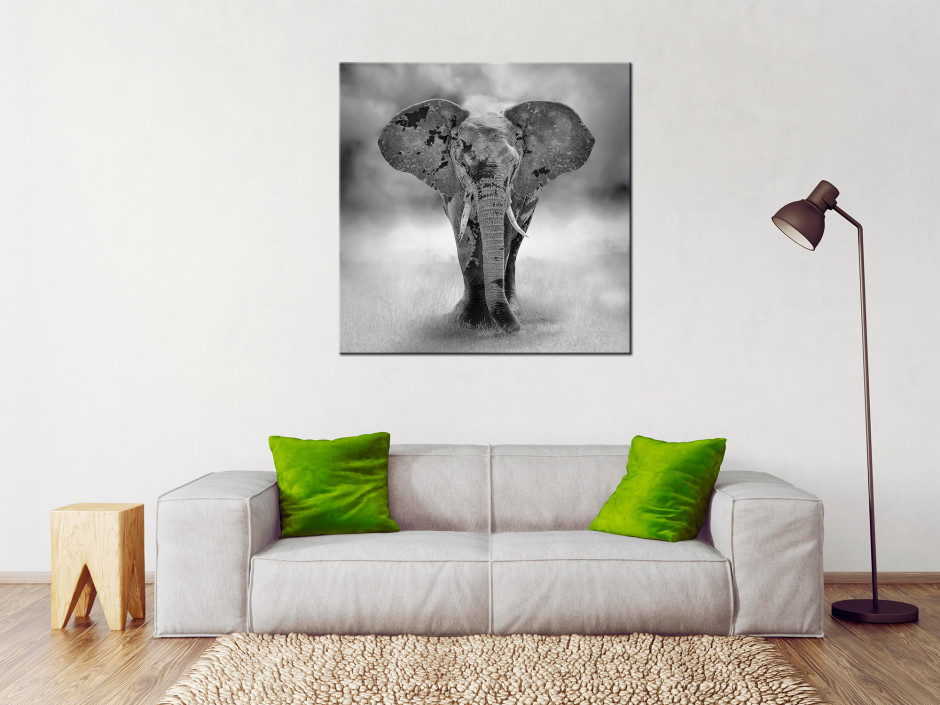 Tableau décoration Petit Eléphant