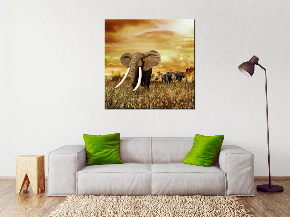 Tableau l'éléphant toile imprimée