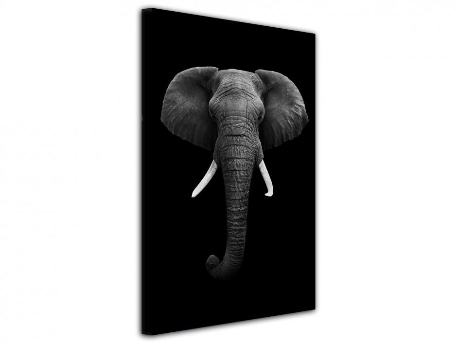 Tableau décoratif animaux Elephant