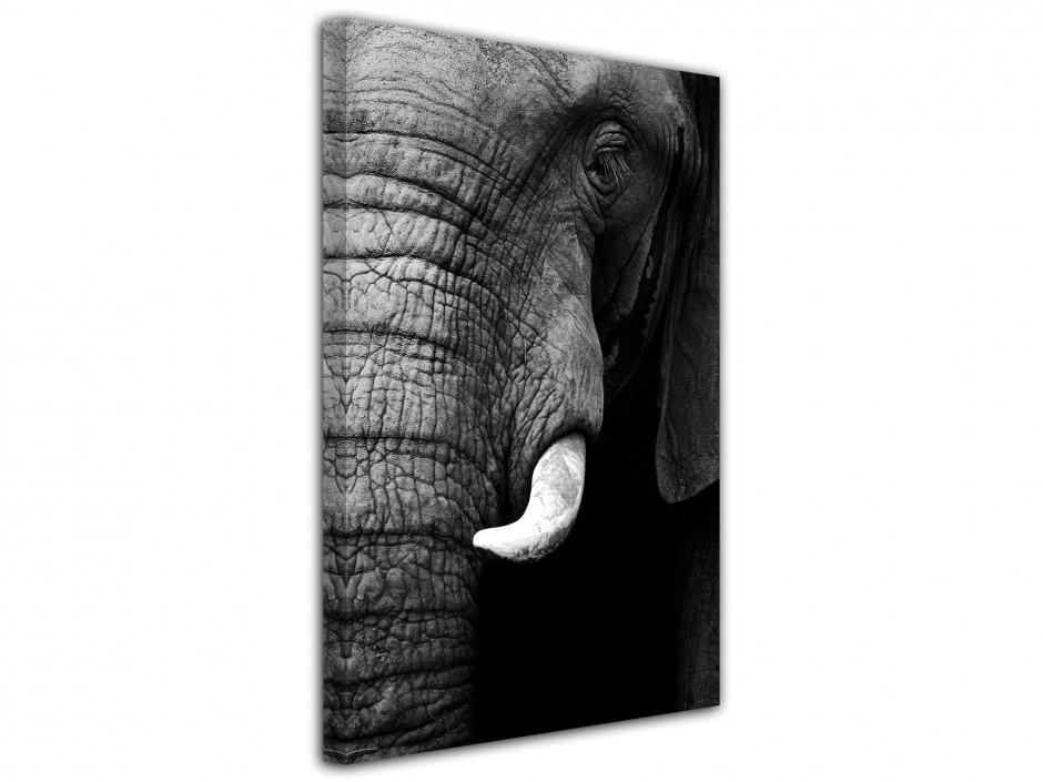 Tableau original éléphant