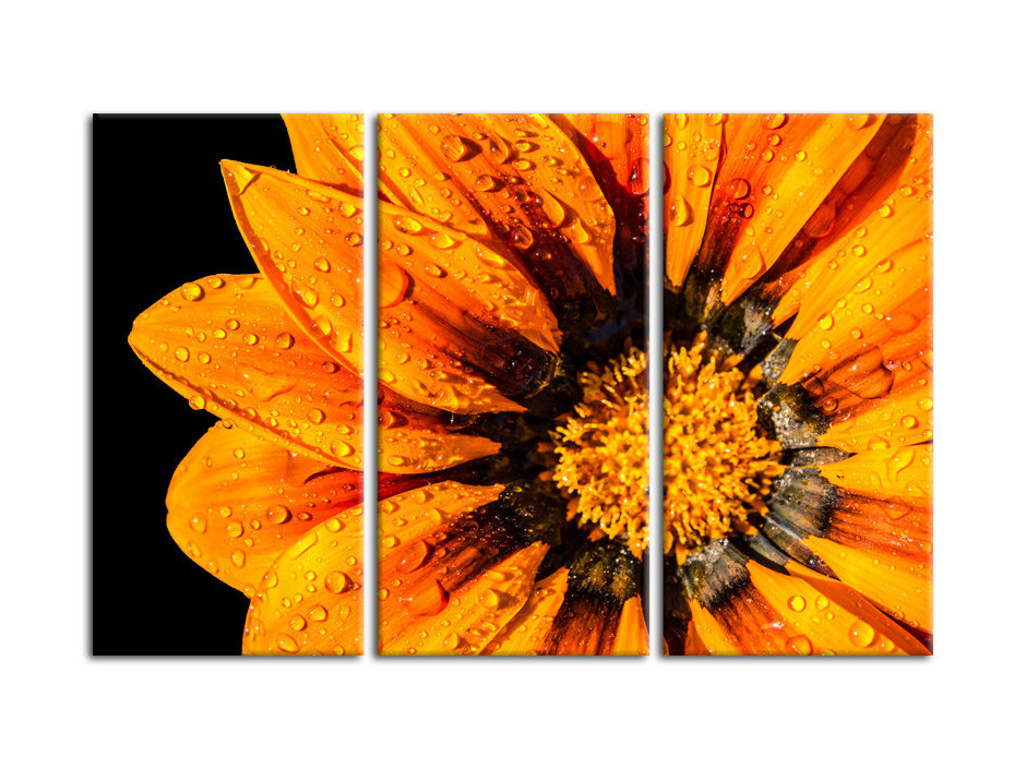 Tableau deco Fleurs et Gouttes d'eau