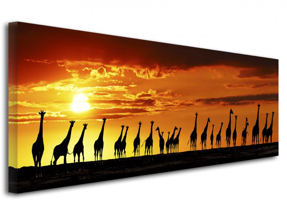 Tabeau cadre photo les girafes.