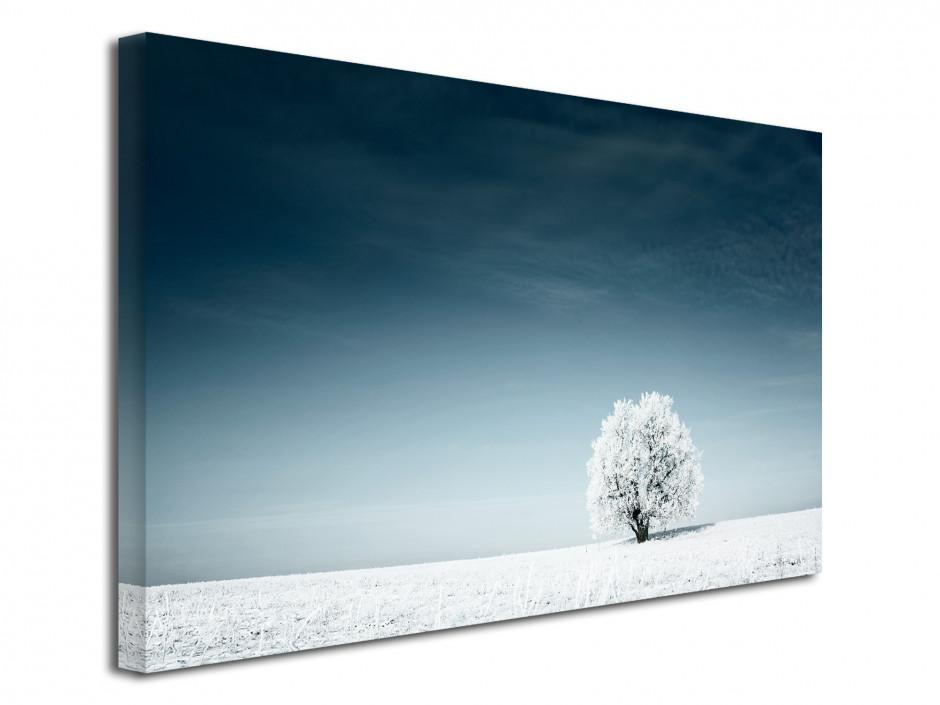 Tableau toile photo paysage SOLITAIRE