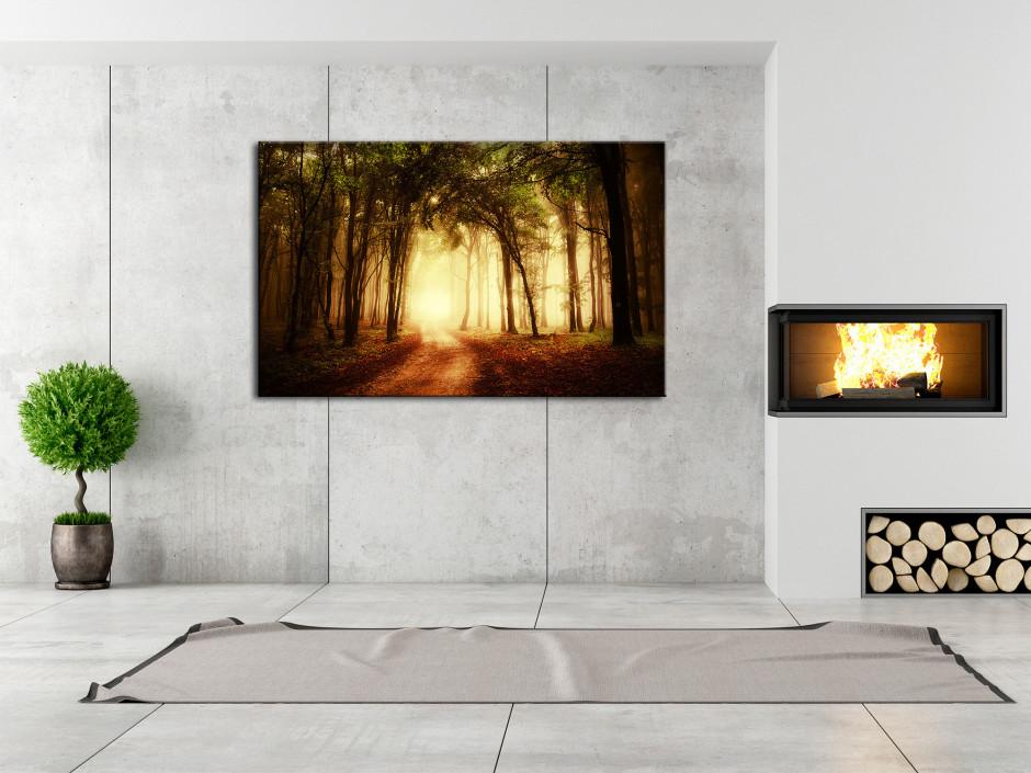 Tableau toile photo paysage COUCHER DE SOLEIL EN FORET