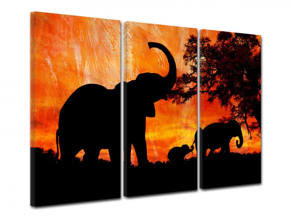 Tableau decoratif Elephant d'Afrique