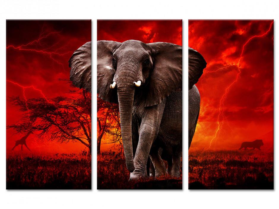 Tableau triptyque Elephant d'Afrique
