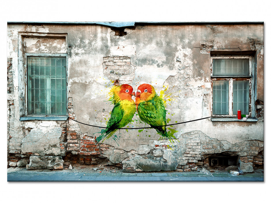 Tableau aluminium photo graffiti COUPLE OISEAUX