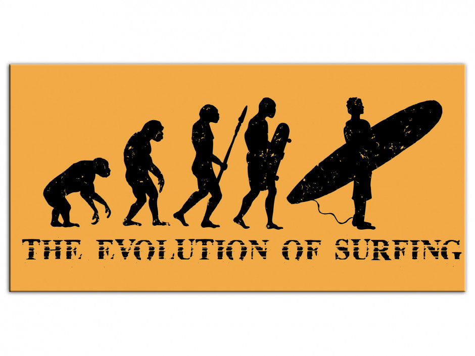 Tableau Aluminium Evolution of Surfing