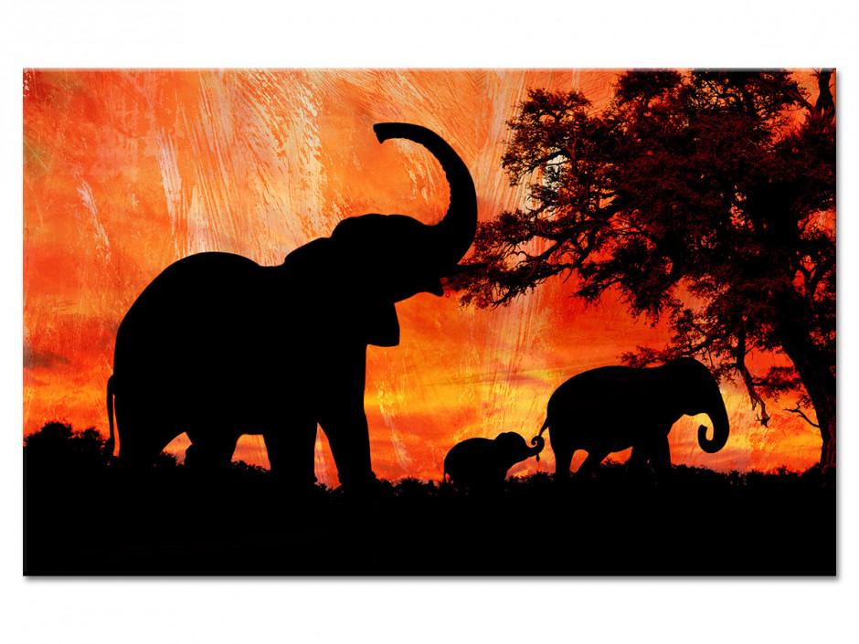 Tableau Aluminium Paysages Africain Les Eléphants