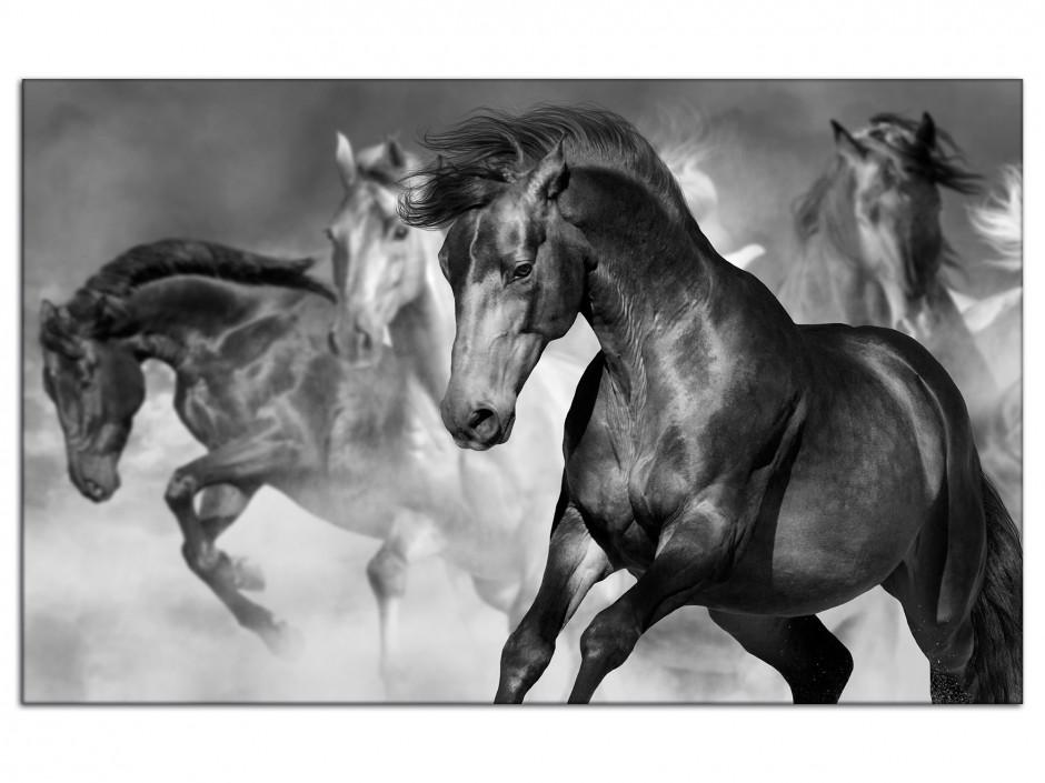 Tableau aluminium course de chevaux