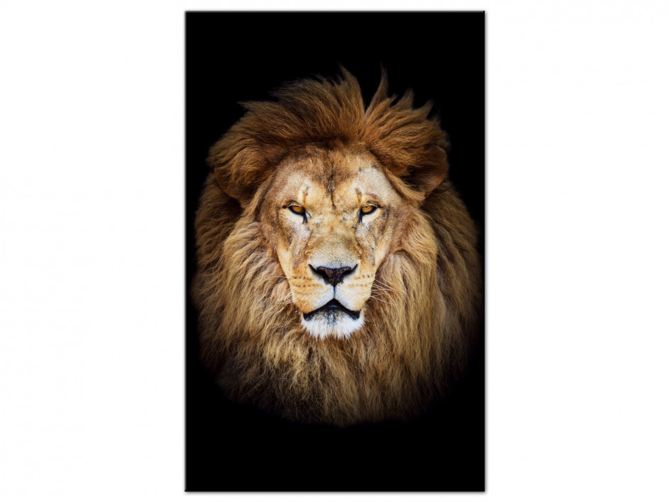 Tableau aluminium unique Le Roi LION