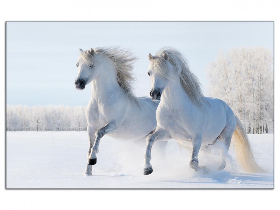 Tableau aluminium Chevaux dans la neige