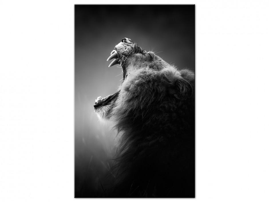 Tableau aluminium déco moderne rugissement du lion