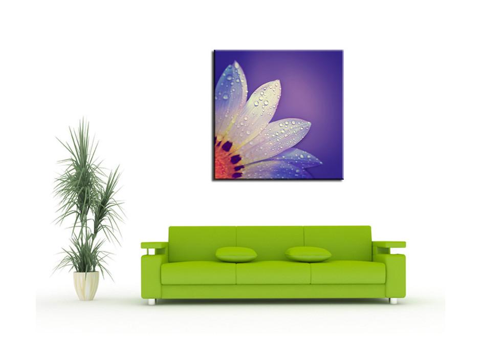 Tableau Aluminium deco pétale de fleurs violet