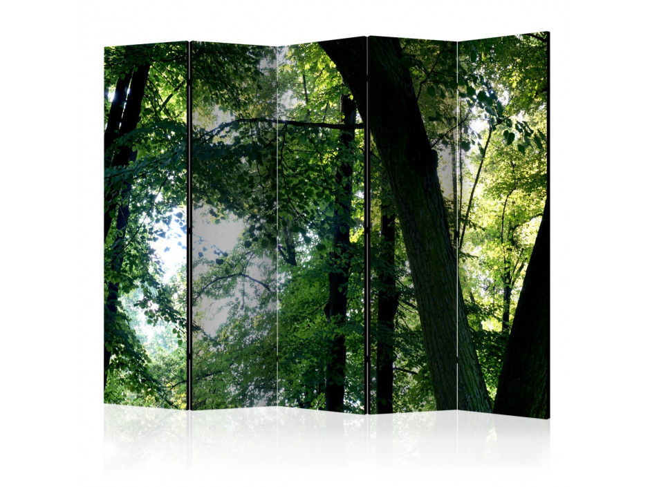 Paravent 5 volets  Spring in the Park II [Room Dividers]