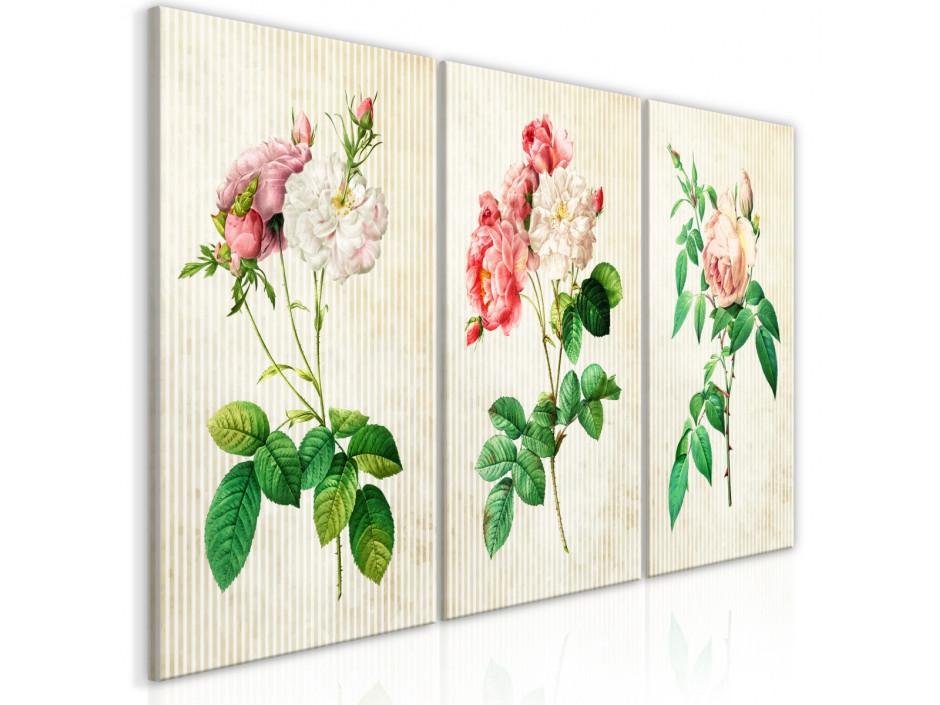 Tableau  Floral Trio (Collection)