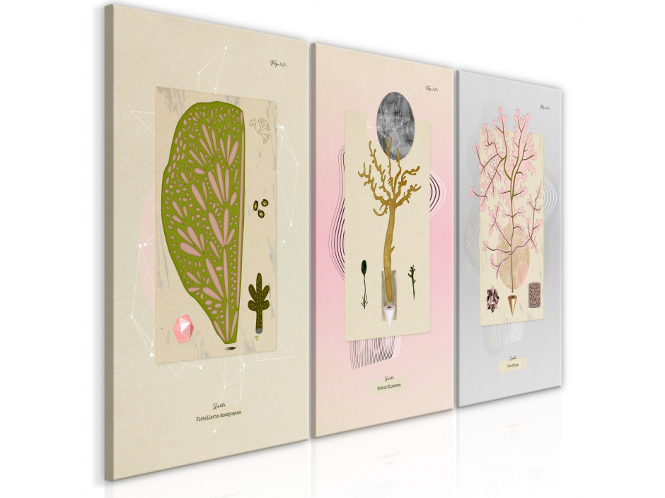 Tableau  Trees (Collection)