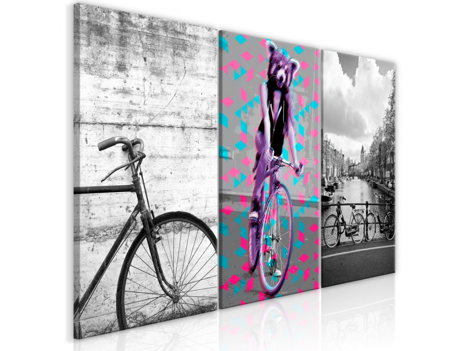 Tableau  Bikes (Collection)