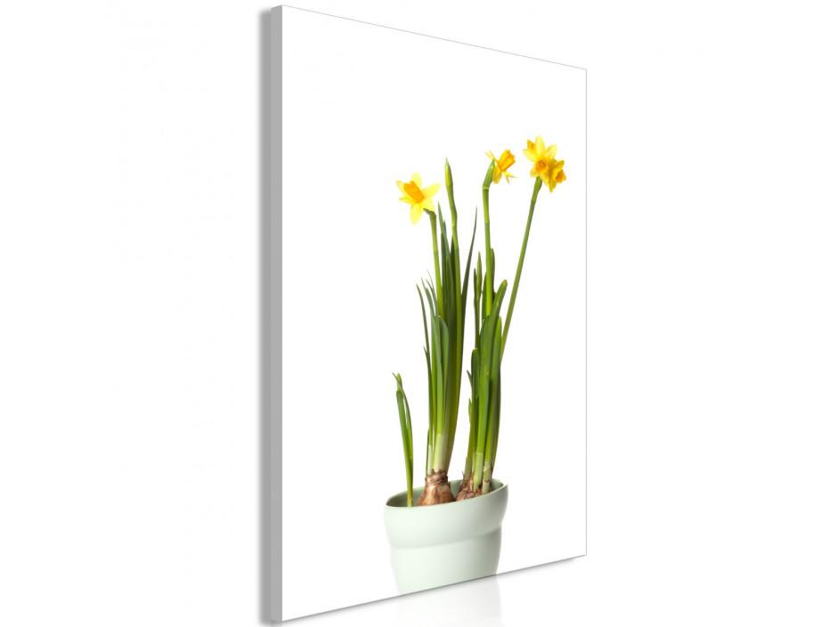 Tableau  Narcissus (1 Part) Vertical