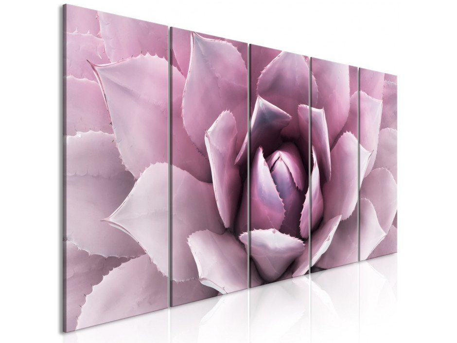 Tableau  Agave (5 Parts) Narrow Pink