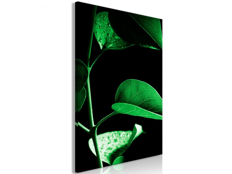 Tableau  Plant in Black (1 Part) Vertical