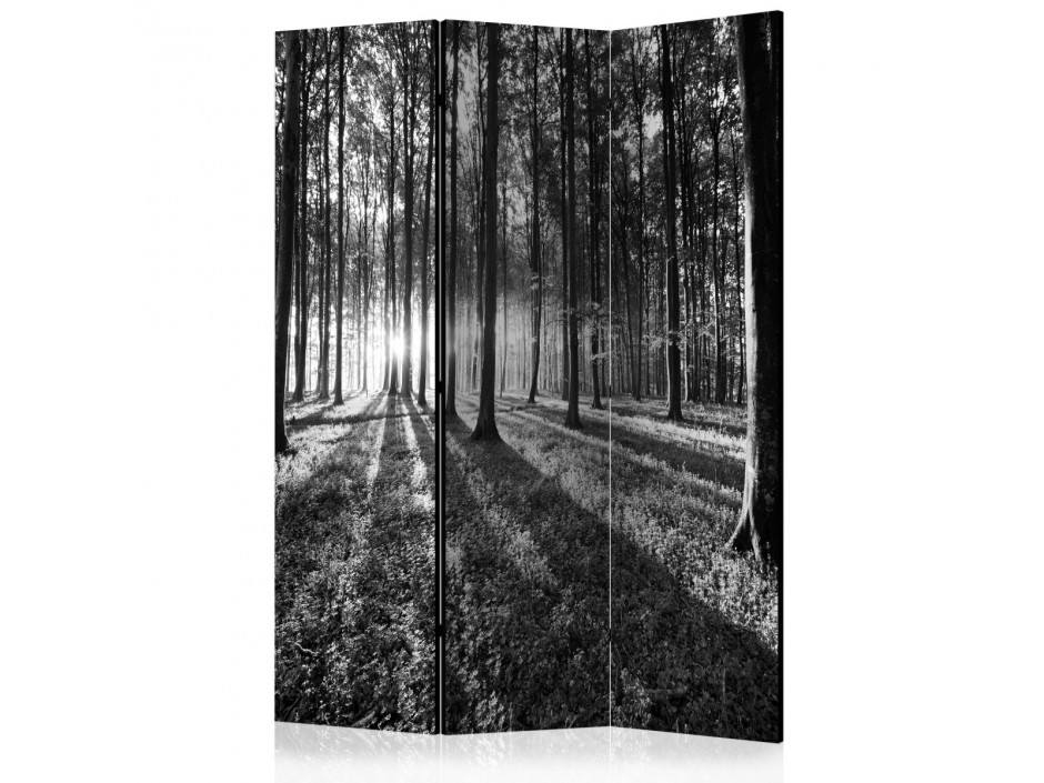 Paravent 3 volets  Grey Wilderness [Room Dividers]