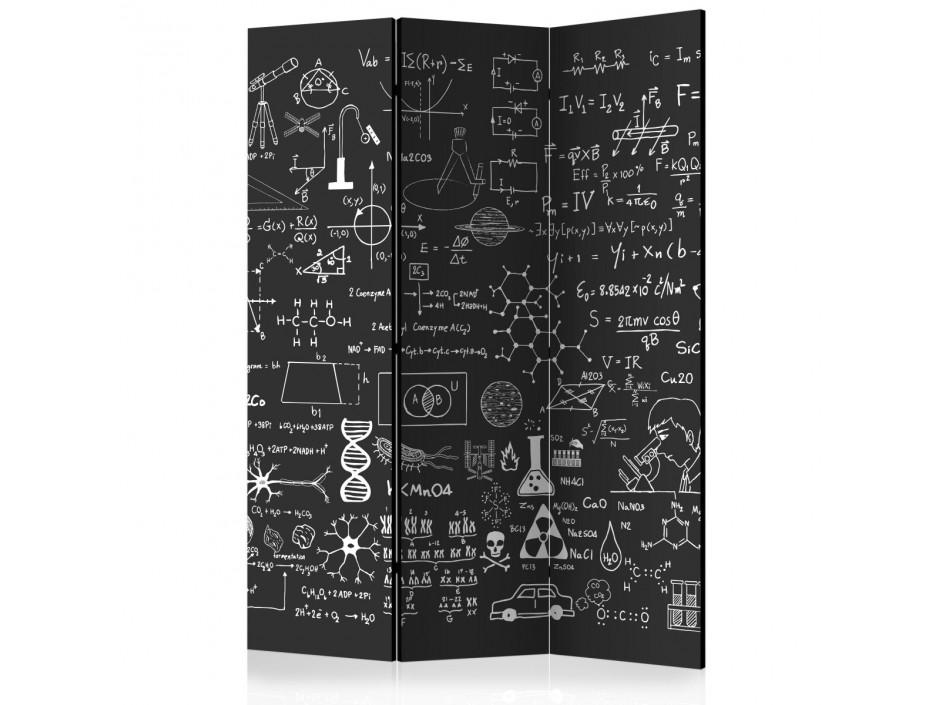 Paravent 3 volets  Science on Chalkboard [Room Dividers]