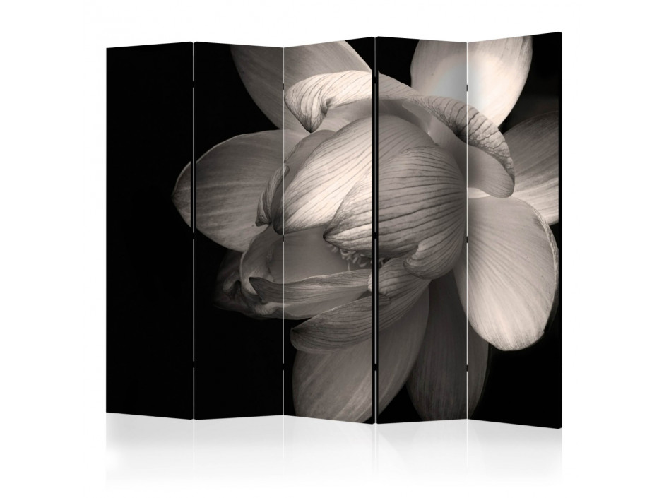 Paravent 5 volets  Lotus flower II [Room Dividers]