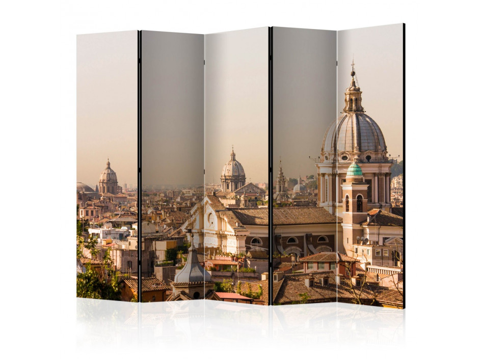 Paravent 5 volets  Rome  birds eye view II [Room Dividers]