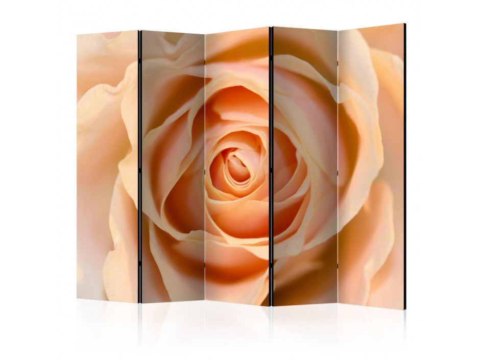 Paravent 5 volets  Peachcolored rose II [Room Dividers]
