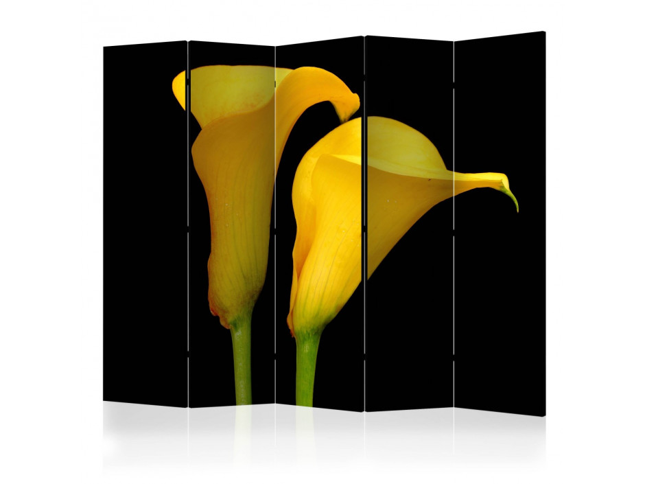 Paravent 5 volets  Two yellow calla flowers on a black background II [Room Dividers]