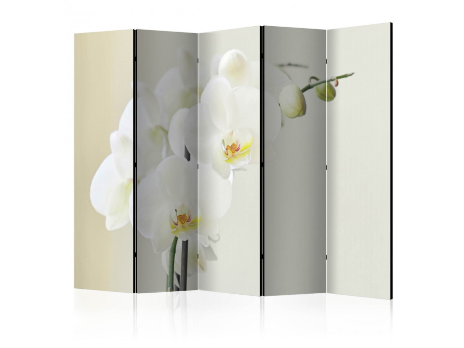 Paravent 5 volets  White orchid II [Room Dividers]