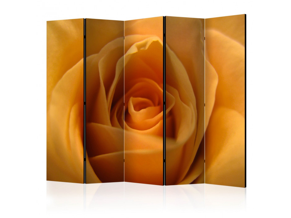 Paravent 5 volets  Yellow rose – a symbol of friendship II [Room Dividers]