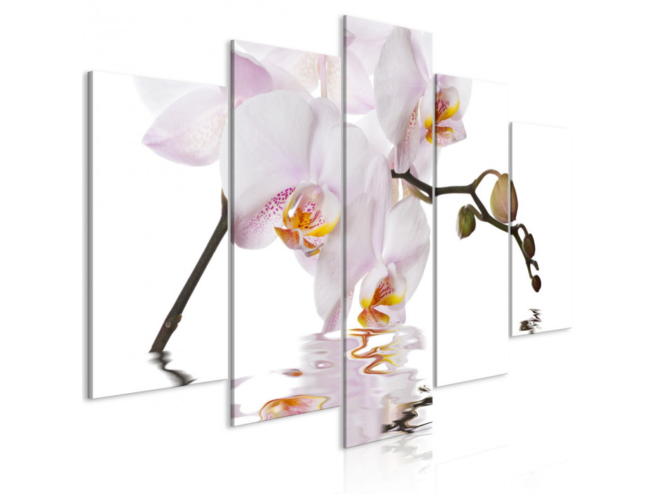 Tableau  Delightful Orchid (5 Parts) Wide