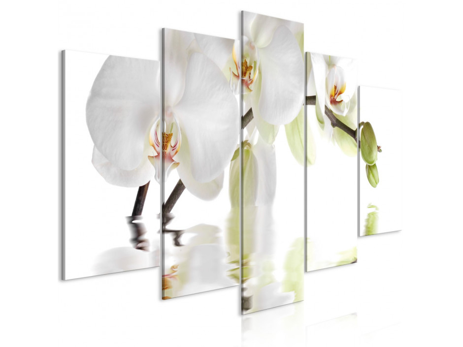 Tableau  Wonderful Orchid (5 Parts) Wide