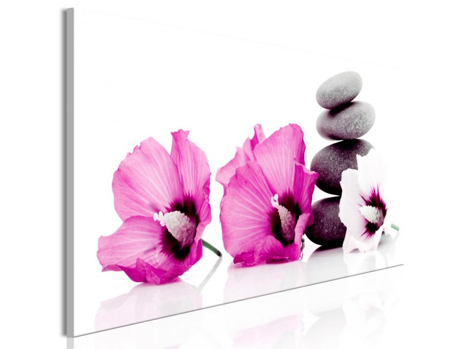 Tableau  Calm Mallow (1 Part) Narrow Pink
