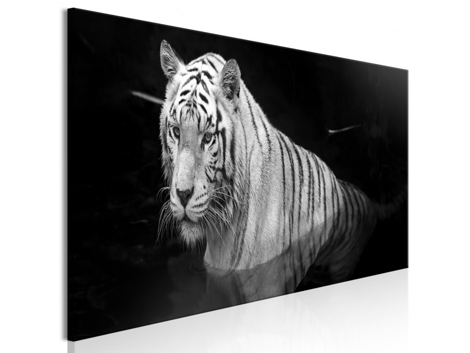 Tableau  Shining Tiger (1 Part) Black and White Narrow