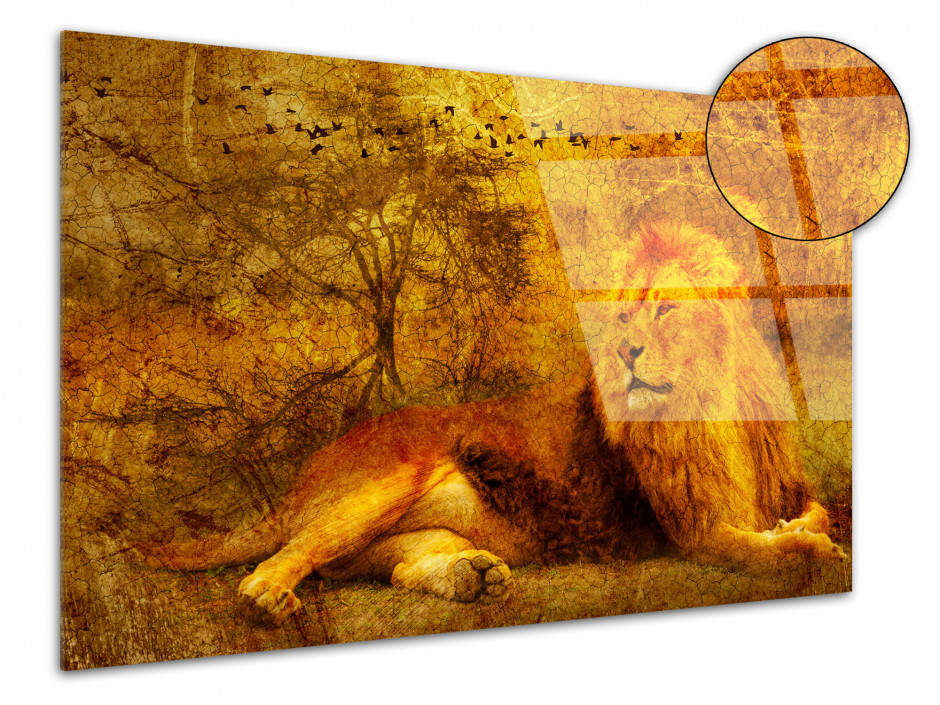 Tableau plexiglas déco vintage ANIMAL AFRICAIN