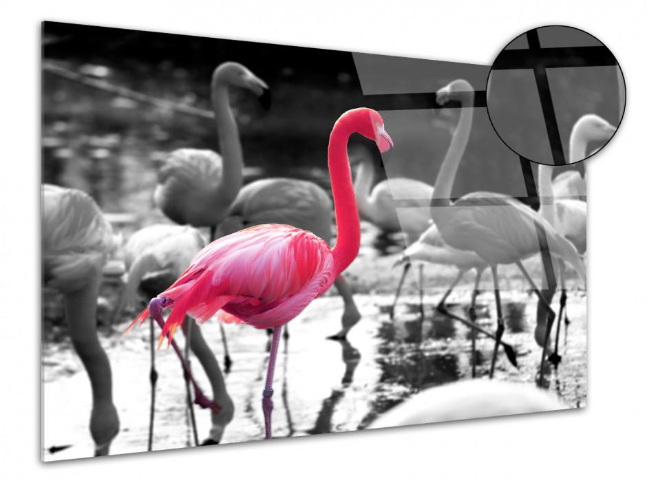 Tableau plexiglas décoration FLAMANTS ROSES