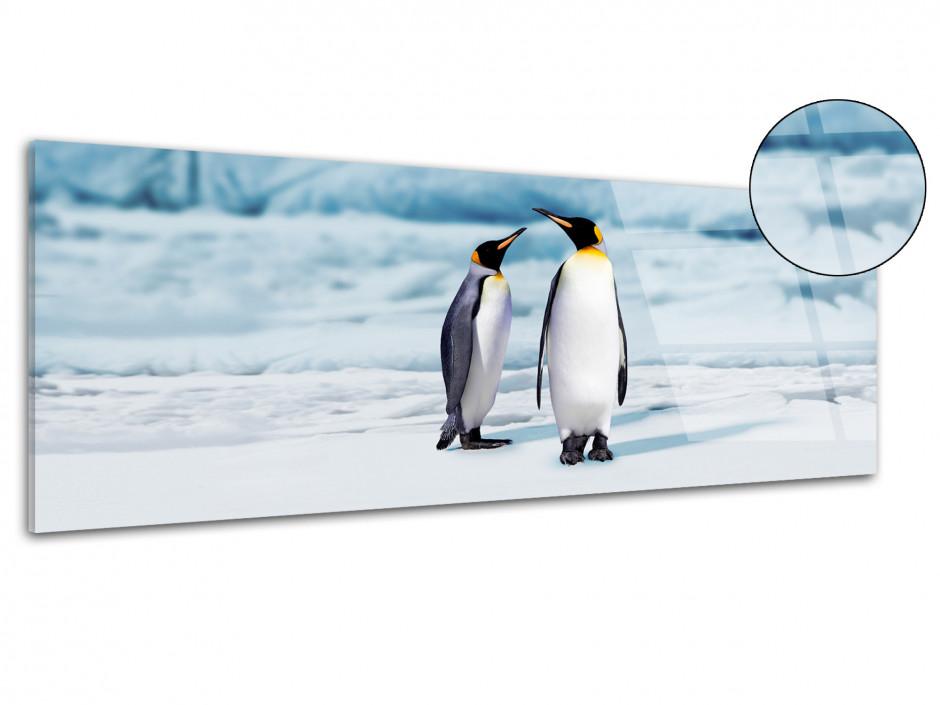 Tableau plexiglas panorama PINGOUINS