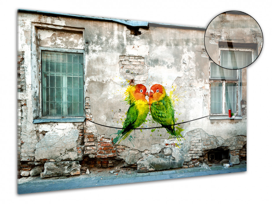 Tableau plexiglas photo graffiti COUPLE OISEAUX