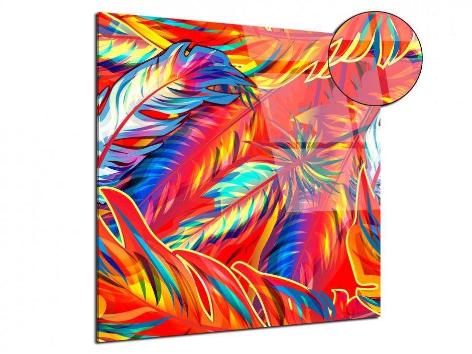 Cadre plexiglas décoratif Plumes colorées
